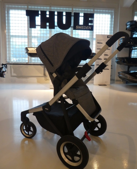 thule sleek